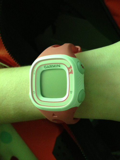 I got a Garmin Forerunner 10 and forgot to tell all of you! I'm going on my first run with it this morning so I'll let you all know how it holds up!