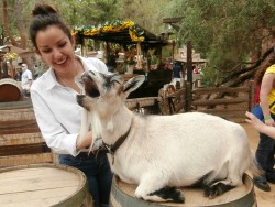 Just me and this freaking goat. Just laughing our heads off together.