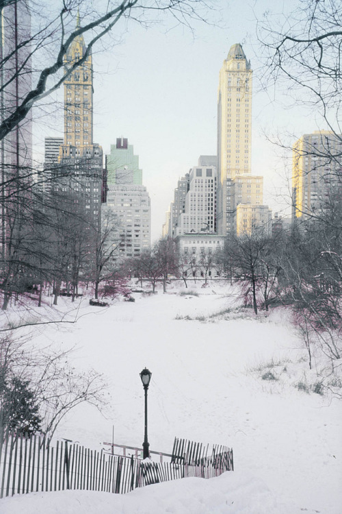 nosens:  Central Park Snow Scene-02 (by Eric99v)