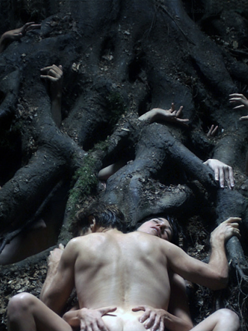 AntiChrist Lars von Trier | 2009 Cinematography | Anthony Dod Mantle