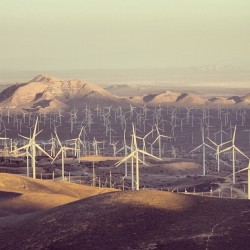 generalelectric:  Another shot of the #wind farm in #Tehachapi, #California, home to #GE Power & Water's brilliant wind #turbine. Photo by @sessenyc. #windturbine #technology