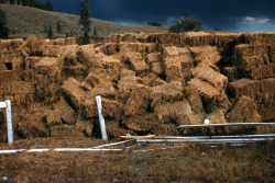 Hebgen Lake, Montana, Earthquake August 1959. Culligan Ranch haystack upset by shaking. (USGS)