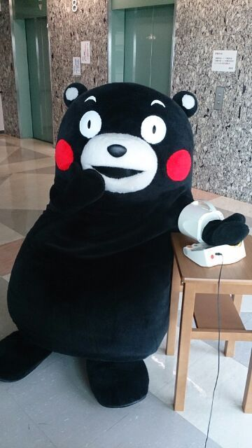 tabitoe:  kumamometer  the results are in… you're that much kuma, kumamon