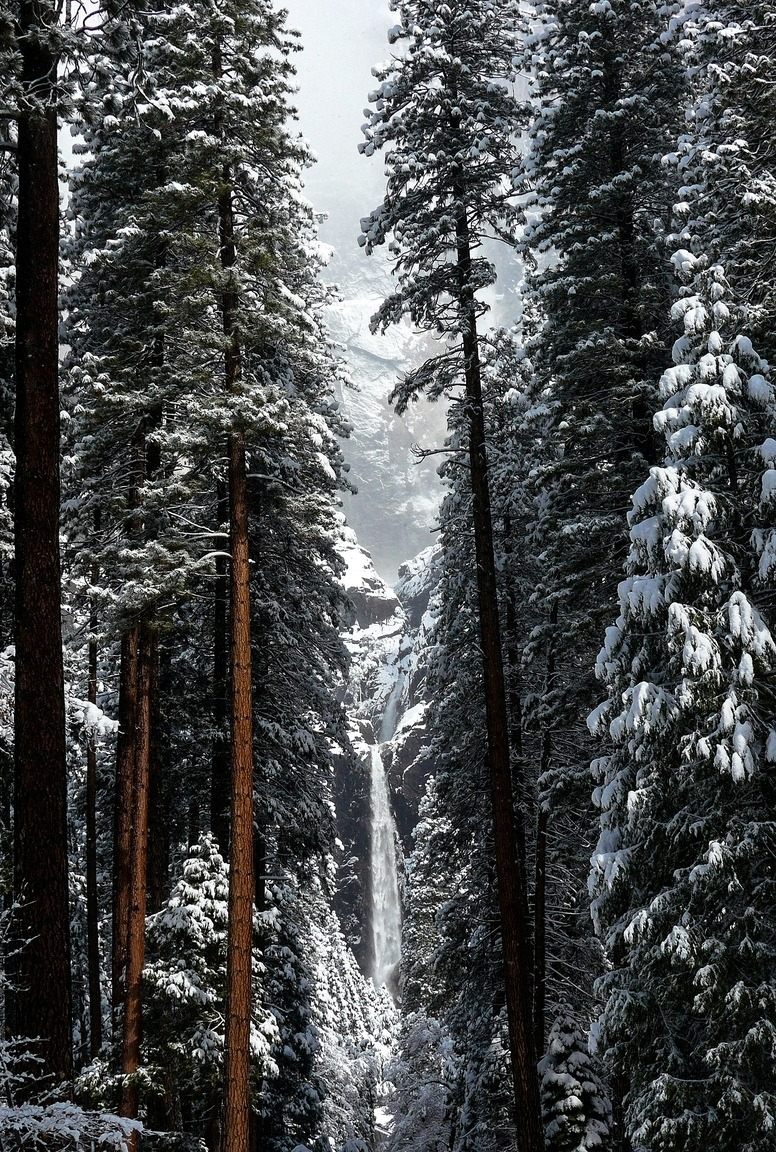 0rient-express:  Lower Yosemite Falls, Winter | by tanngrisnir3.
