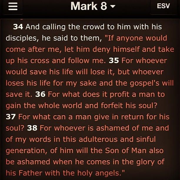 Book: Mark Chapter: 8 Verse(s): 34-38 #wotd #denyYourself #followJesus #jesussaidthat