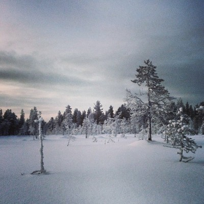 #clouds #snow #winter #lapland #peace #peaceful #quiet #finland  (at Pyhätunturi)