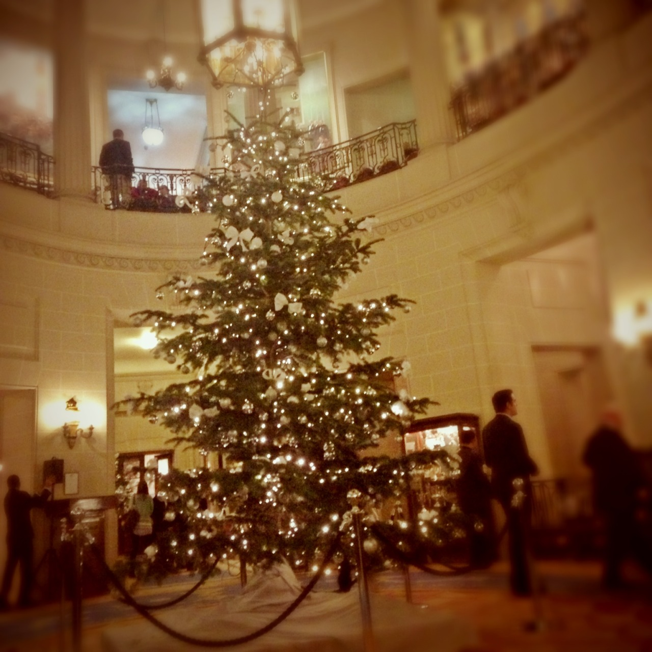 Christmas carols and mulled wine. A beautiful evening. at RAC Club – View on Path.