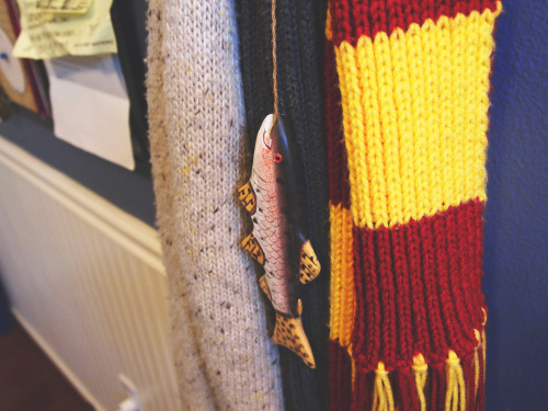 So proud of this fish that hangs with my scarves.