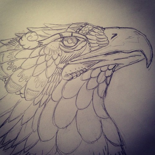 Trying something different from all the skulls #eagle #drawing #tribal