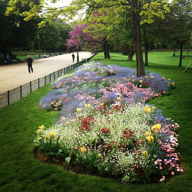 Paris, France: Flowers in the Parc Monceau this afternoon.