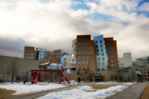 Frank Gehry's Stata Center Cambridge, MA - USA Interesting piece of architecture creates a good shot. Nikon D90, Nikon 16-35mm f/4 VR Related stories: Boston, Photography