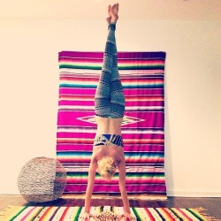 :: yoga view: colorful & upside down