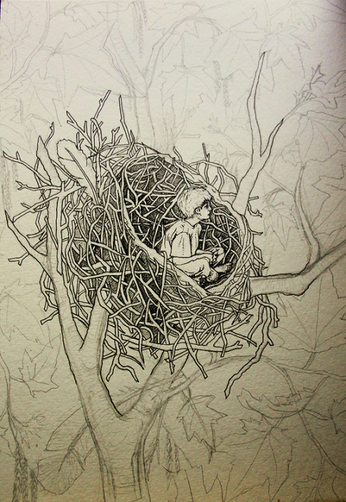 A bird without feathers, work in progress.Drawing a nest requires a great deal of patience but I think it's been worth it…
