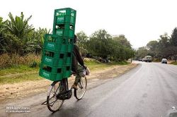 The wonderfully versatile bicycle. Moshi, Tanzania