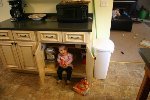 Playing with stuff in Mommy's kitchen! anellewalkerbt:  Someone hiding in my kitchen, her name is Jemma!