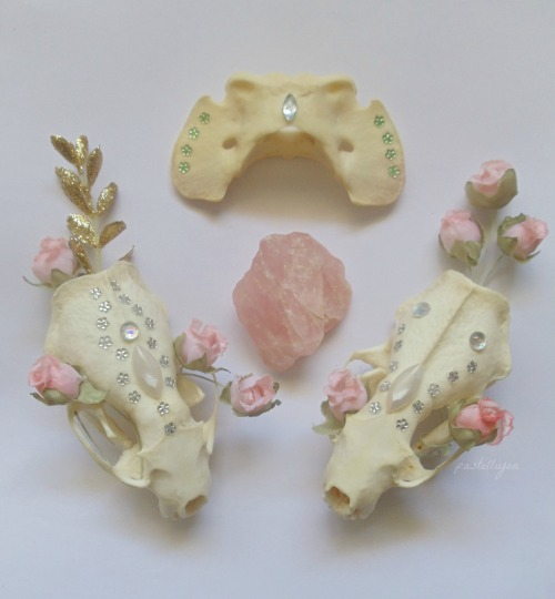 pastelliyon:  Mink skulls and Rose Quartz  lovely :3