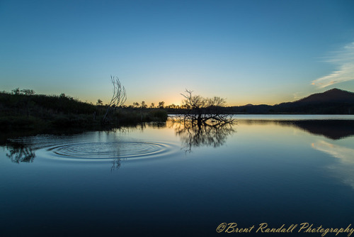 Ripple by BrentJR on Flickr.A través de Flickr: Another one from the Wyaralong Dam. A perfect mirror reflection on the lake for sunset. It is a great place to go for photos. The Wyaralong Dam is near Beaudesert in Queensland's Scenic Rim.