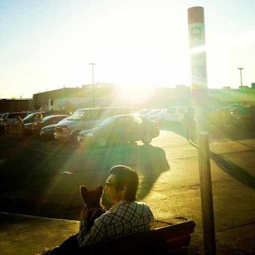 Man and dog catching early evening rays at No Frills. #toronto #sunset #dog  (at Joe's No Frills)