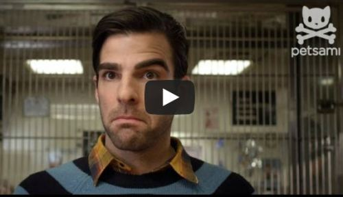 Here Is A Heartwarming Short Film About How Zachary Quinto Adopted His Dog