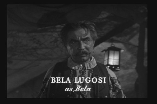 cryptofwrestling:  Bela Lugosi as the hapless Gypsy werewolf in The Wolf Man (1941)