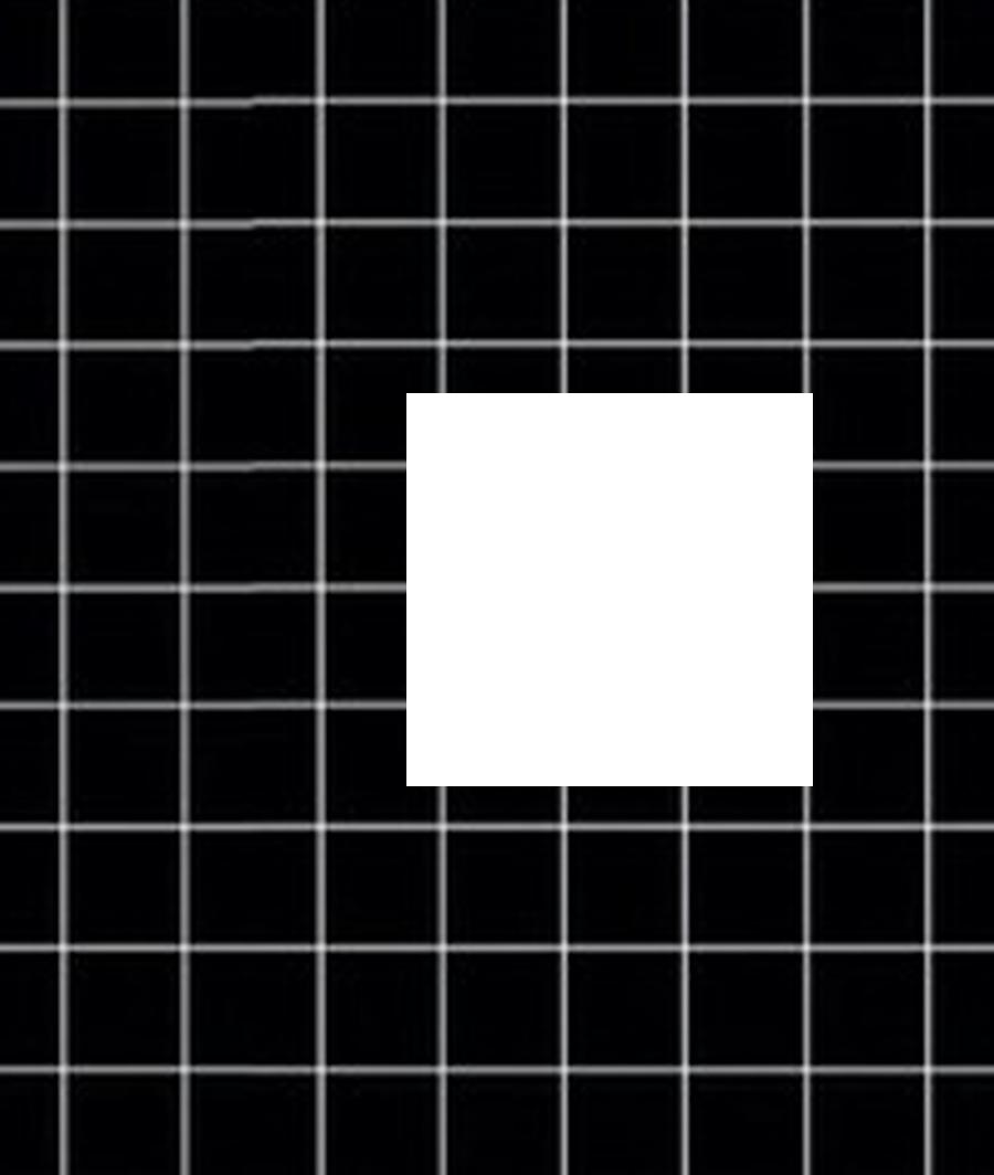 Polaroid Overlays Like Or Reblog If Using x - Transparents