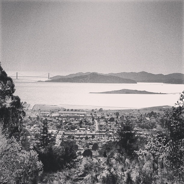 Vintage image of Golden Gate Bridge in the distance, circa 2013 (at Château Cerrito)