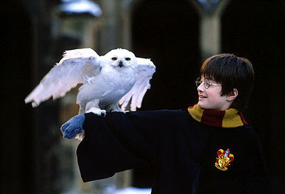 Checkout these Shocking Harry Potter Movie Mistakes! Some of these will blow your mind. #3 is Wild. Check them out: For such a big movie they sure made some big mistakes.