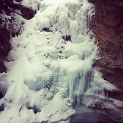 Frozen waterfall hike. #Johnston Canyon