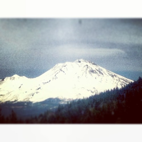 Moms shot of #mountshasta during the drive up to Portland, OR. ☀❄🌲 #norcal #california #sunshine #californialove #snow #beautiful
