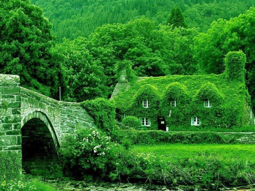 mysticalearth:  nymph-naiad:  despicvble:  Fairytale Cottages, England  A DREAM.  One of my favorite photos!