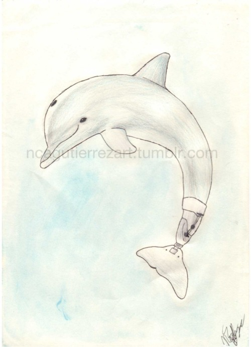 """Winter, the dolphin"" I finnished a lond ago, but only now I found time to post."