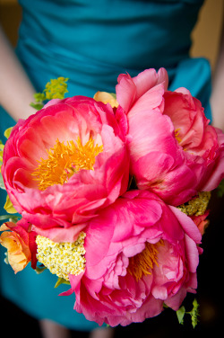burnettsboards:  bright pink bouquet