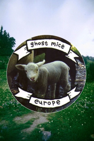 d4mpfeathers:  made a ghost mice edit. background isn't mine.