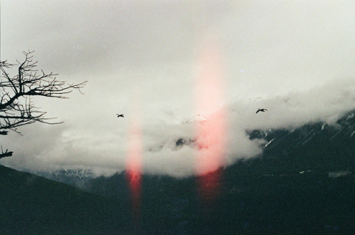 fiskarna:  by kodacolorframes on Flickr.