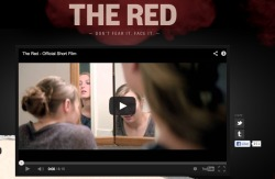 SALT Money : Face the Red Campaign ASA created a horror film to promote SALT Money, their consumer facing financial education brand platform. We created the site to promote it, plus OLA and a sweepstakes on Facebook. See the Site