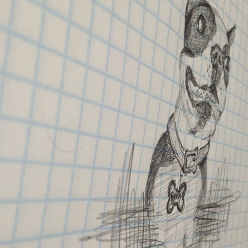 Dog doodles. #bostonterrier #drawing #doodles #sketch #babygirl