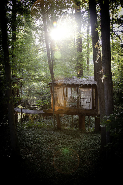 mymodernmet:  Having grown up with fond memories of playing in a treehouse, Atlanta-based environmentalist Peter Bahouthpartnered with local builder Nick Hobbs to design and construct his own adult version. Bahouth selected a tr