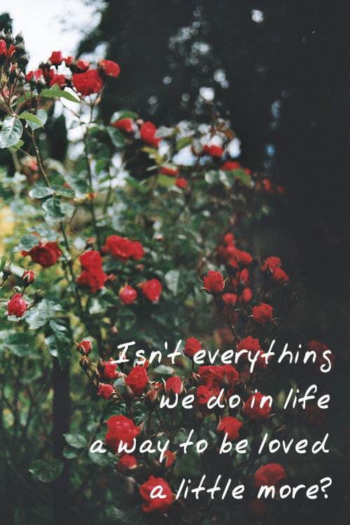 "hipstermovielines:  ""Isn't everything we do in life a way to be loved a little more?"" -Before Sunrise, 1995"