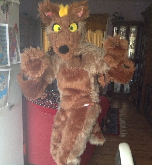 This girl calls herself a pro fursuit maker. This bitch causes so much shit. Someone made eyes for her fursuit and she refused to take them off or give credit. She finally gave in after getting a bunch of hate, she made some new eyes and calls them even better than the last ones. She hasn't uploaded any pictures of the new eyes so I'm guessing they look terrible.