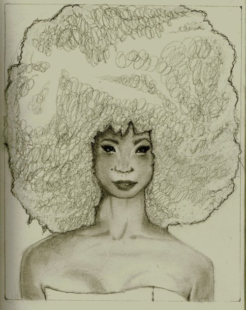 drawing afros is pretty fun [unfinished] - [more poof appreciation]