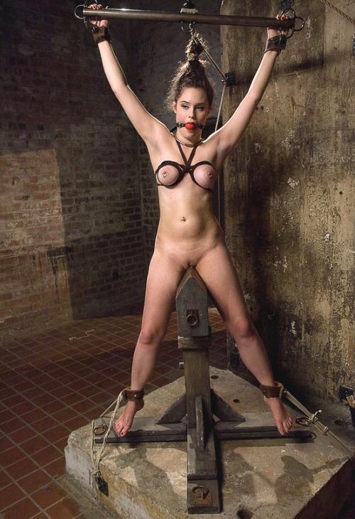 Sex pictures Slut endures hard fucking 9, Mature naked on free-anal-porno.mysexydownload.com