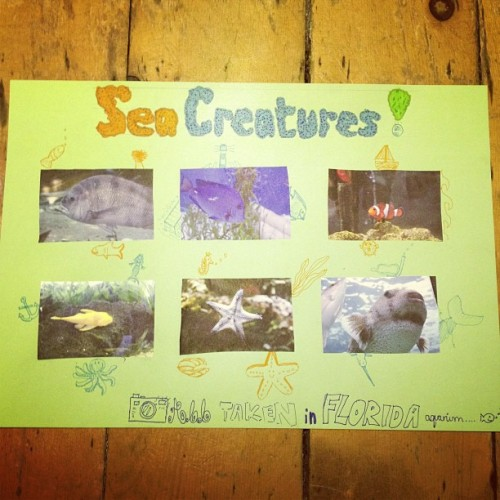 My #seacreatures poster for #art #fish #nemo #pufffish #bass #mermaid #clam #octopus #starfish #boat #anchor #shark #lighthouse #pier #narwal #whale #scuba #seaweed  (at Bryn)