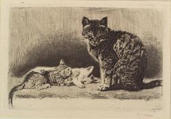 nypl:  Is there anything better than a catnap in a sunbeam? These cats - sketched by Samuel Putnam Avery in 1876 and found in the Miriam and Ira D. Wallach Division of Art, Prints and Photographs - have the right idea and we suggest taking a page out of their book. In fact, why not take your favorite book, find your favorite spot in the sun and enjoy a relaxing Caturday…err, Saturday we mean!