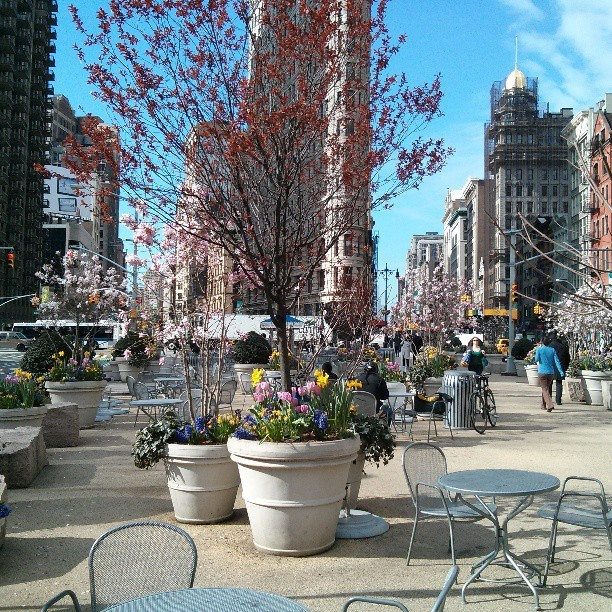 Spring comes to the Flatiron District #latergram  (at Madison Square Park)