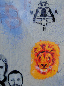 streetartsf:  Lion mane. Regan Tamanui. Clarion Alley @Mission Street in San Francisco, Ca.