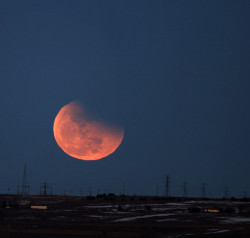 Lunar Eclipse (by gainesp2003)