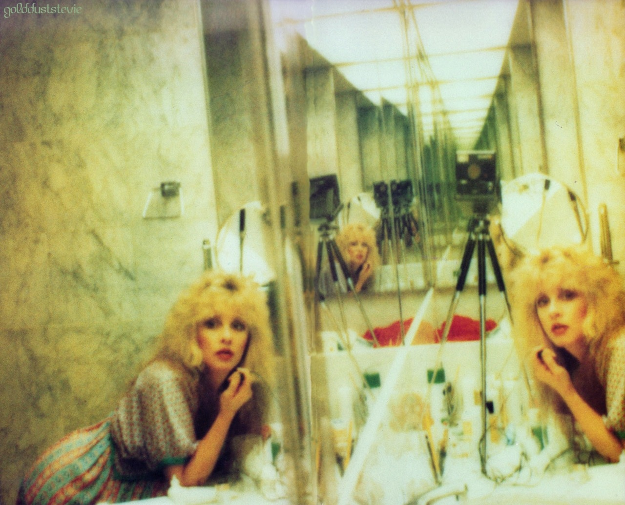 rookiemag:  Stevie Nicks bathroom selfie, old school polaroid style -Jessica H. via goldduststevie: