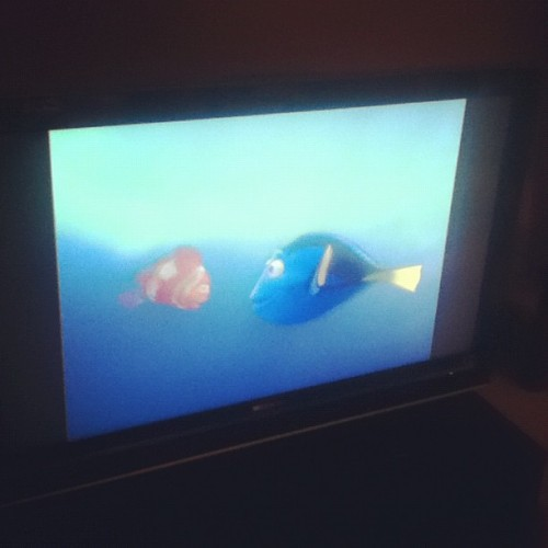 My favorite movie is on TV :] #Psherman42wallabywaysydney #justkeepswimming