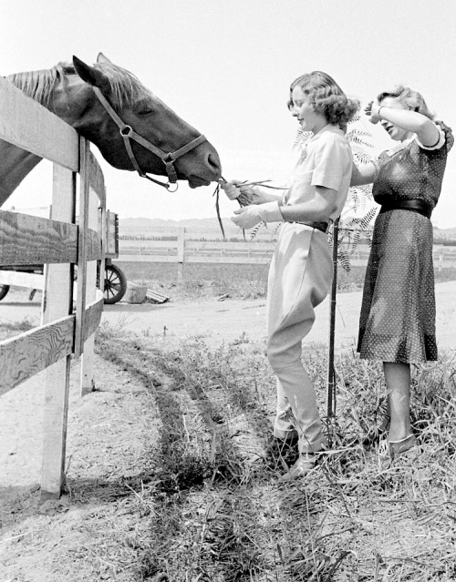 mariedeflor:  Barbara Stanwyck photographed on her ranch by Alfred Eisenstaedt, 1936