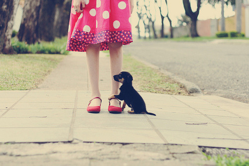 (37.52) real friends! by Honey Pie! on Flickr.